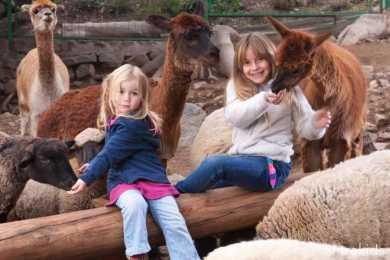 Granjaventura - Parque Mahuida - Panoramas con niños